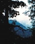 Blaues Fotoalbum