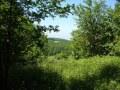 18.06.2005 Wanderung zur Velmerstot