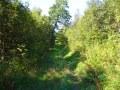 2008-08-30 Wanderung zur Silbermühle